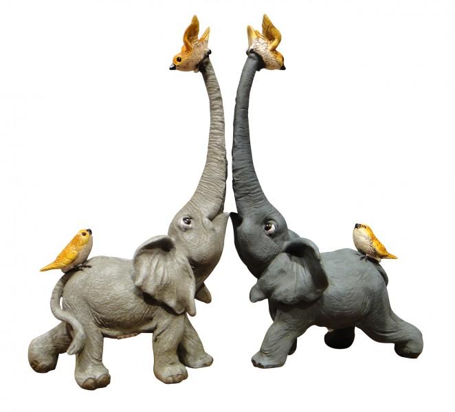 elefanten vogel
